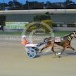Race 7 Tell the Linesman