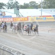 Race 1 Beef City Blaze
