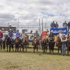 2015 - Bell campdraft - Sunday