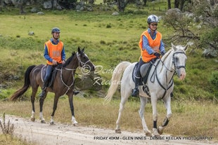 2018 - HORSE ENDURANCE RIDES - All photos and/or files can be purchased with the security of Pay Pal or email me for Direct Bank Deposit details.
