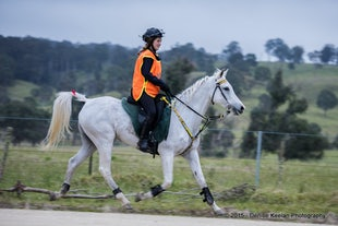 ENDURANCE RIDES WITH LOW RES ONLY AVAILABLE. - These photos can only be ordered as low res files as the hi res files were lost when a external drive crashed...