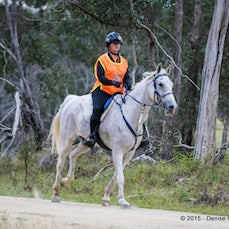 GLEN INNES ENDURANCE RIDE @ RED RANGE - Low res only available. These files may be smaller than usual as the hi-res files were lost in a hard drive crash....