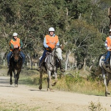 GLEN INNES ENDURANCE RIDE - 40 KM RIDE - SUNDAY - Low res only available. These files may be smaller than usual as the hi-res files were lost in a hard...