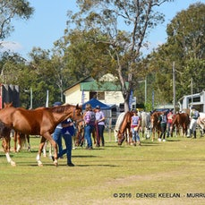 MURRUMBA MAGIC - SATURDAY VETTING