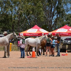 VETTING - NANANGO ENDURANCE - NOV 2016