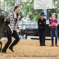 LITTLE HORSE TROT - 2 YRS & UNDER