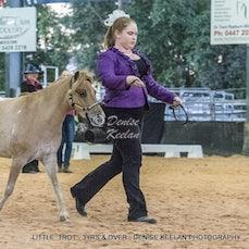 LITTLE HORSE TROT - 3YRS & OVER