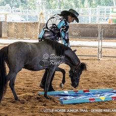 296-LITTLE HORSE JUNIOR TRAIL