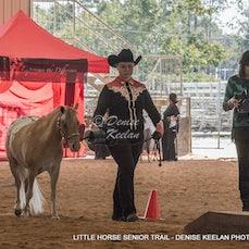 302-LITTLE HORSE SENIOR TRAIL