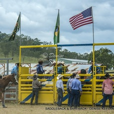 SADDLE BRONC & BAREBACK