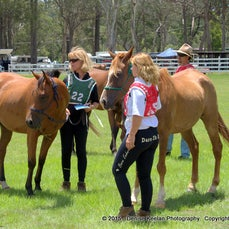 Blackbutt Endurance - pre ride. Jan 2015 - Low res only available. These files may be smaller than usual as the hi-res files were lost in a hard drive...
