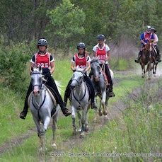 Blackbutt Endurance - Ride - Jan 2015 - Low res only available. These files may be smaller than usual as the hi-res files were lost in a hard drive crash....