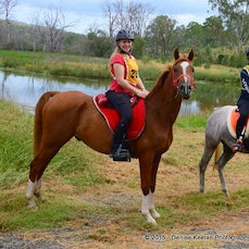 Wyaralong Dam Endurance Ride - Saturday.