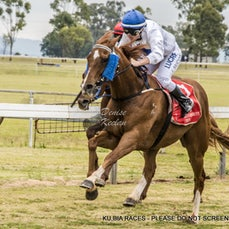 KUMBIA RACES - MELBOURNE CUP DAY