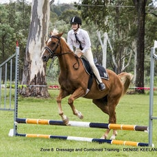 ZONE 8 DRESSAGE & COMBINED TRAINING DAY - NANANGO