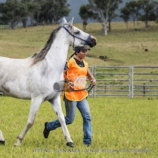 VETTING PRIOR FRIDAY 40KM - CANVAS & ACRYLIC GLASS AND METAL PRINTS AVAILABLE. PRICES, SIZES & DETAILS AVAILABLE.