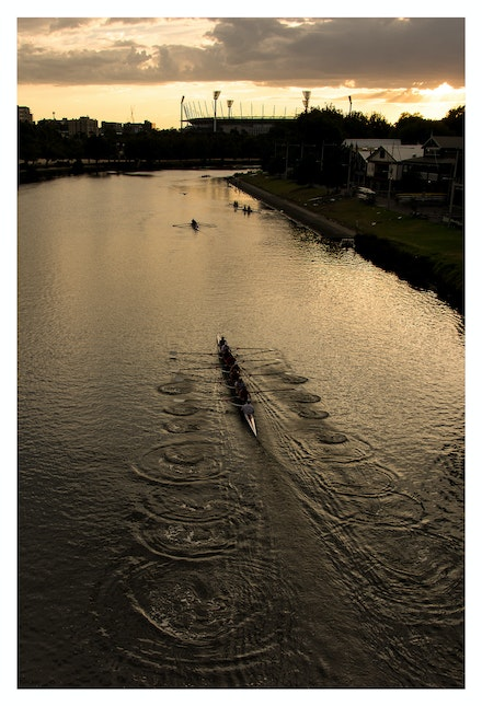 Rowers on the Yarra at Dawn - Priced from $15 for standard lustre print or $35 for museum grade paper print. Click on the image shopping cart for more...