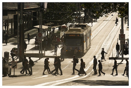 Bourke Street Tram - A Melbourne tram on a sunny Bourke Street morning. Priced from $15 for standard lustre print or $35 for museum grade paper print....