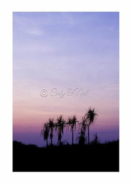 CASUARINA BEACH, NT