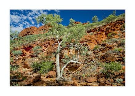 WEST MACDONALD RANGES, NT
