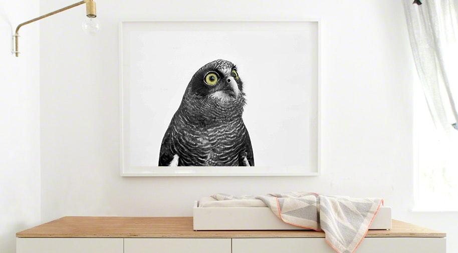 nurseryart_www - The Animal Print Shop by Sharon Montrose