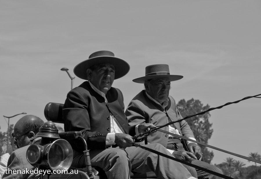 The horsemen of Seville