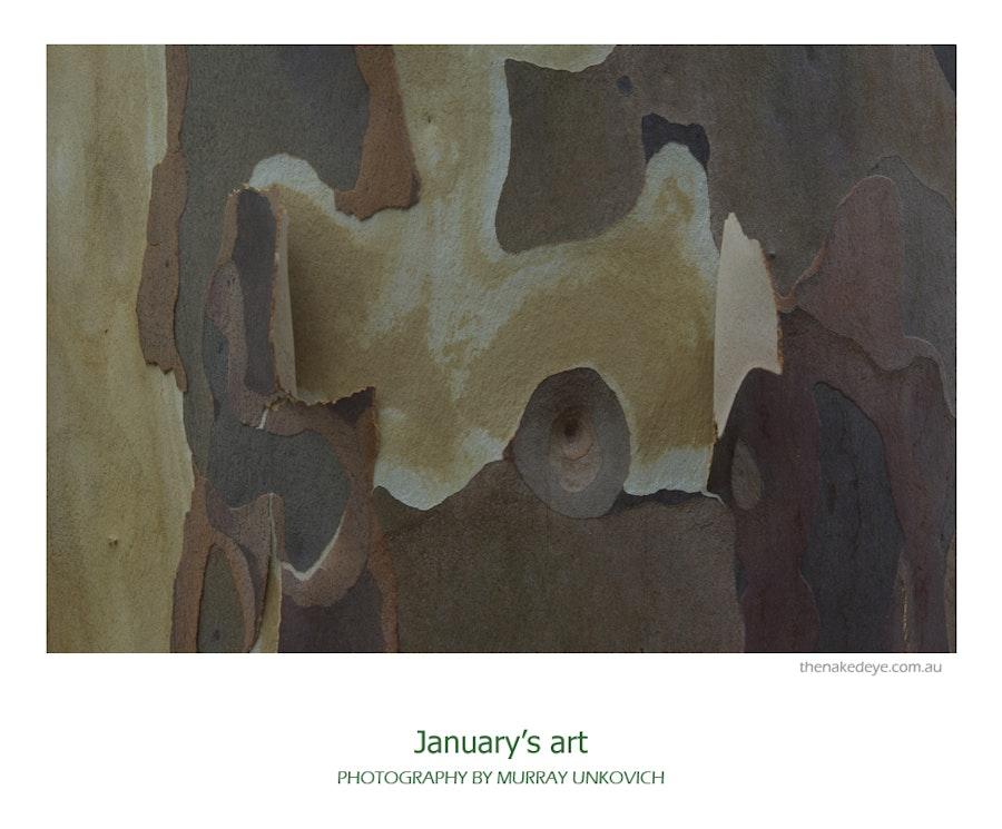 Januarys_art