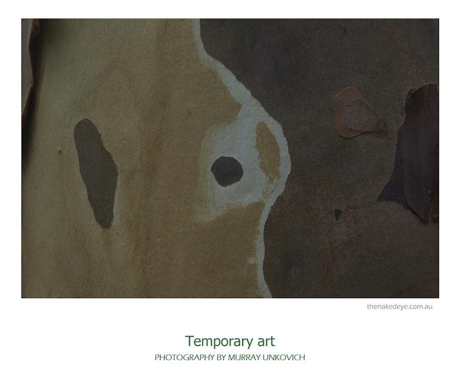 Temporary_art