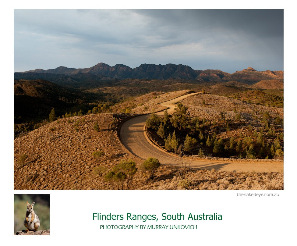 Flinders Ranges-2