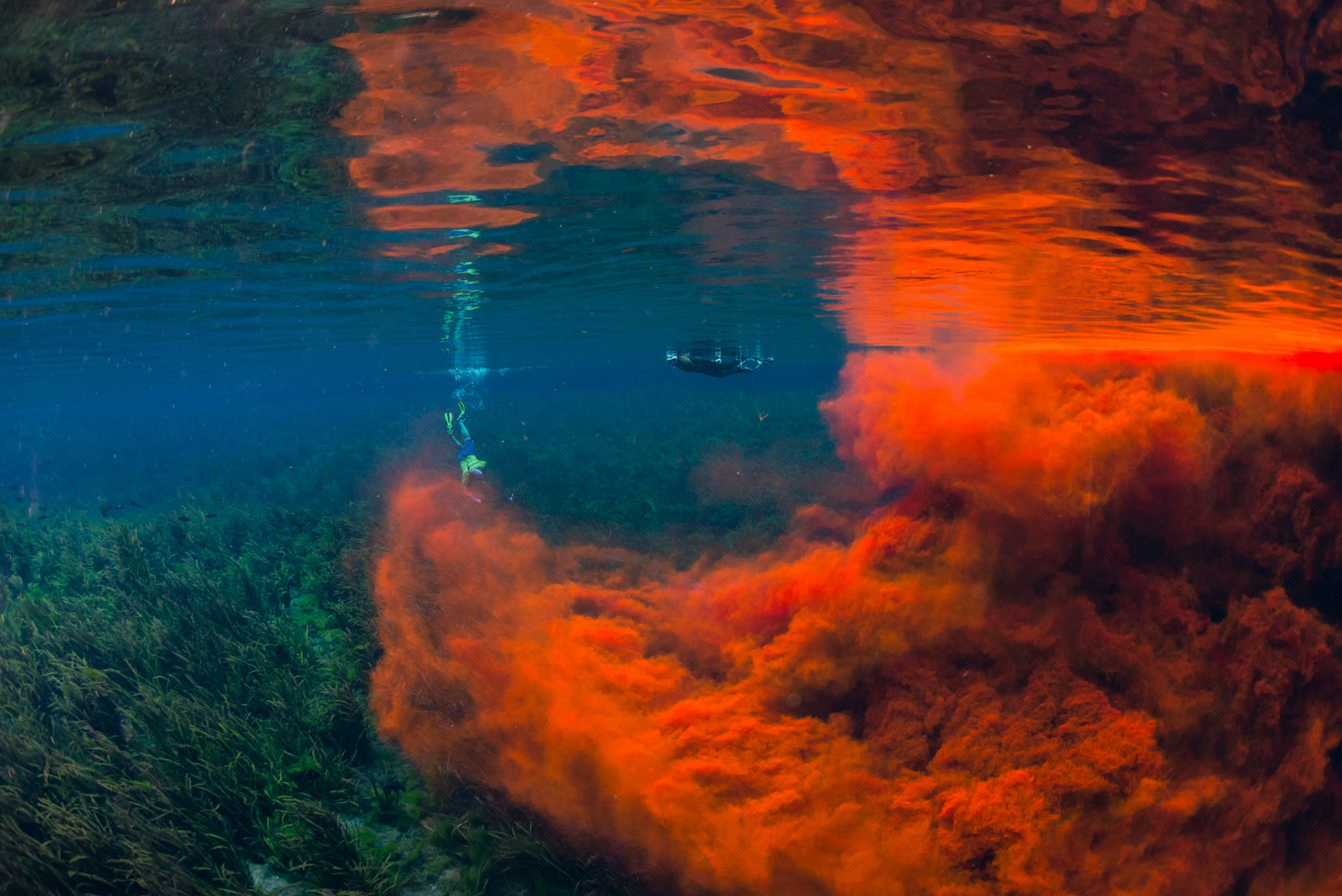A diver next to a cloud of Rhodamine WT