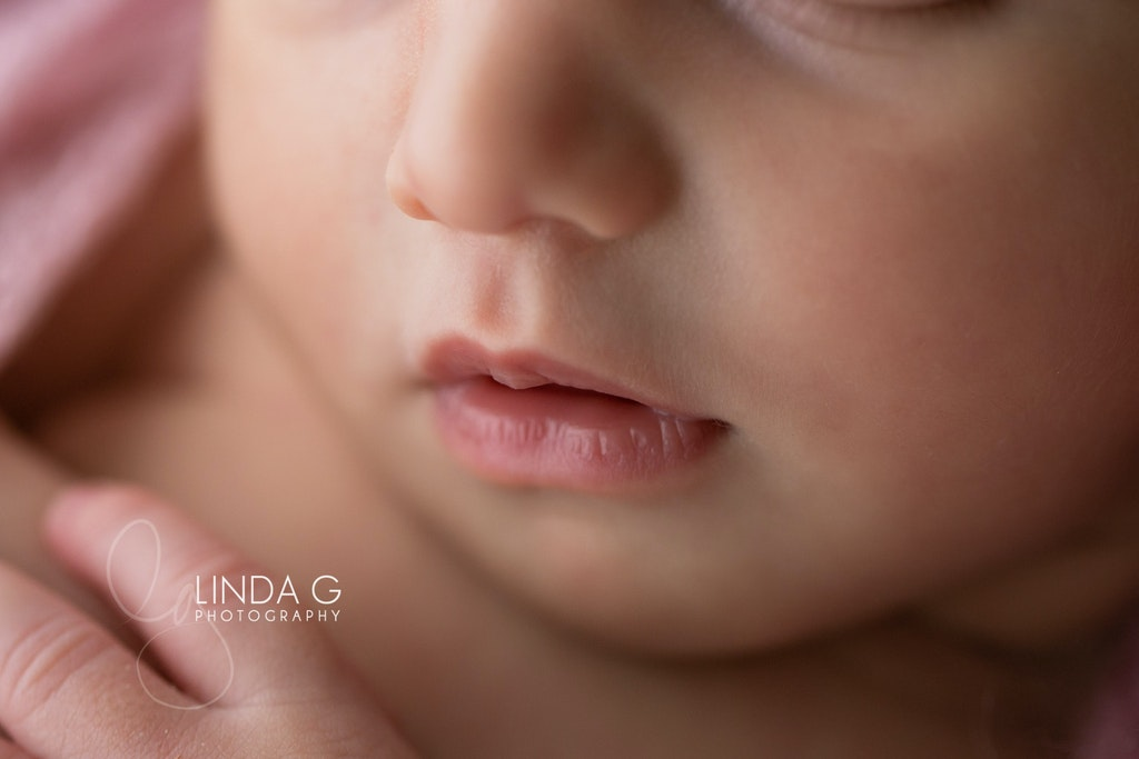 Linda G Photography 1