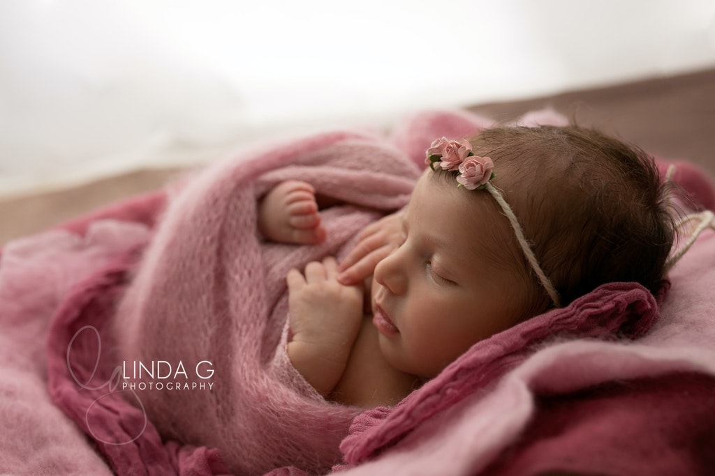 Linda G Photography 4