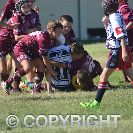 170429_DSC_8982 - 2017 Barcaldine Tree of Knowledge Fest Junior Football carnival