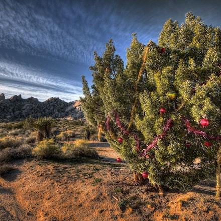 Christmas Pass - is a desert road thru a mtn range west of Laughlin Nevada