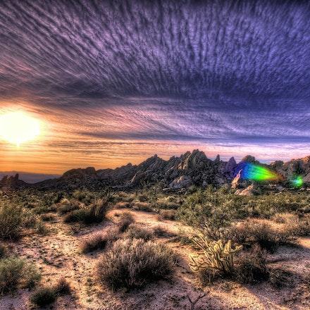 123015 mohave desert nevada (12)