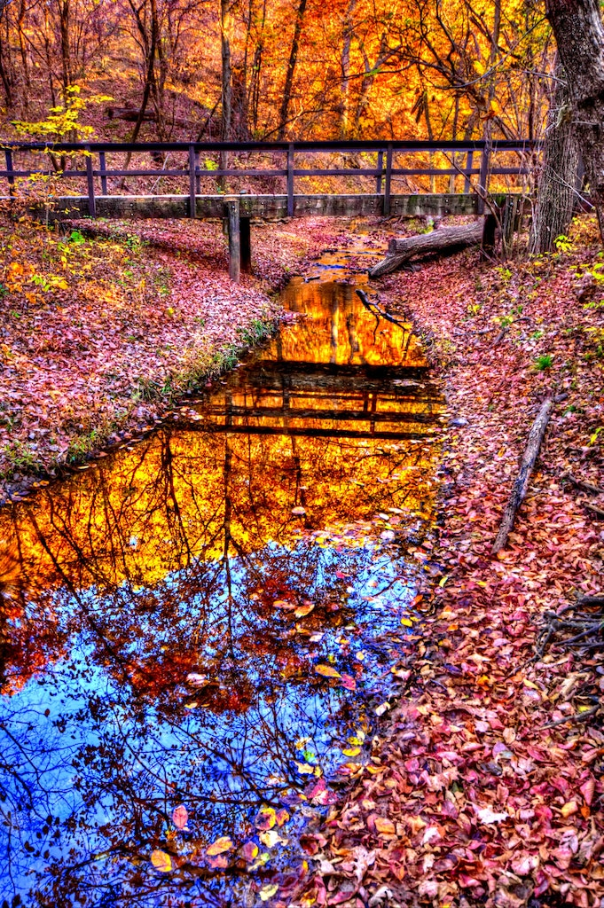 Fall Bridge - A beautiful shot of a walking bridge upstream from the falls at Platte River State park, showing the wonderful colors of fall.