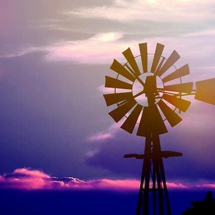 81714windmill west of cortland (5)