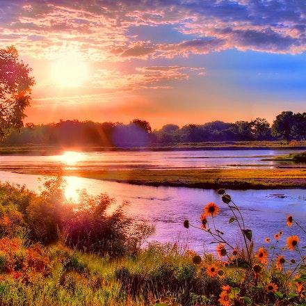 Sunflower River - The Platte River east of Grand island, Nebraska on an August morning.