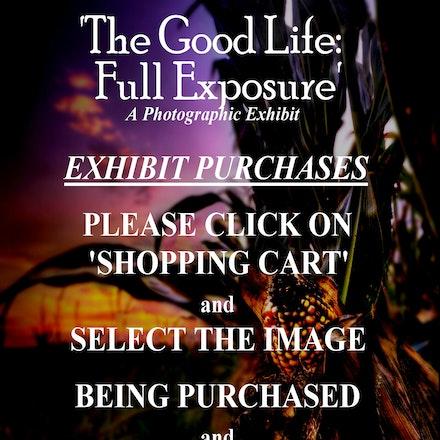 Good Life: Full Exposure  at     Bryan Lifepointe Exhibit