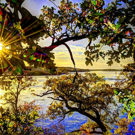 River Thru the Tree 10.17.2017.2 - River Thru the Tree. Flowing waters and a sparkling autumn sunset are visible through the trees from the shore of the...