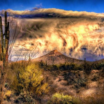 Desert Rain  2.23.2018.1 - Desert Rain. Rain showers quench a thirsty Sonoran Desert landscape in Scottsdale, Arizona. #clouds #rainbow #arizona #phoenix...