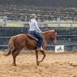 Tony Ernst Horsemanship & Cattle Clinic - Gatton 14/5/17