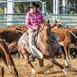 NRCHC Woodenbong 3 & 4/10/15 (Day One) - Beginner Horse, Snafflebit, Rookies, $5000 Novice, $7500 Non Pro & Open Non Pro