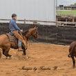Australian Cutting Horse & Youth Group Restricted Snafflebit - Jackpot Show Gatton 22/4/17