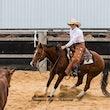 Australian Cutting Horse & Youth Group $30000 Rider - Jackpot Show Gatton 22/4/17