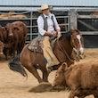 Australian Cutting Horse & Youth Group 7UP - Jackpot Show Gatton 22/4/17