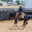 Australian Cutting Horse & Youth Group  $1000 Maiden - Jackpot Show Gatton 22/4/17