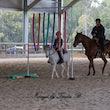 Sundance Horsemanship Clinic - Sundance Horsemanship Clinic at Jimboomba Equestrian Centre 11/6/17