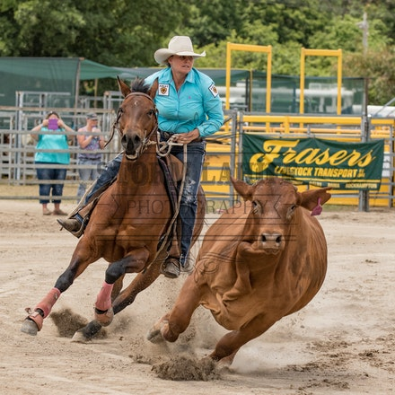 Pryde's EasiFeed Gold Cup - Warwick Rodeo & Campdraft October 2015