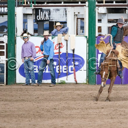 2nd section 2nd divi saddle bronc SAT 29th OCT 2016 - Warwick Rodeo and Campdraft
